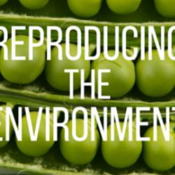 Read more at: Reproducing the Environment